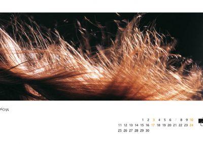 rhenag-kalender6